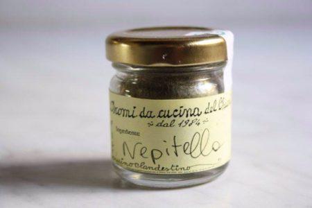 Nepitella Florentine herb